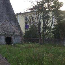 """Patto di Collaborazione per la cura e la valorizzazione del """"Cimitero degli Svizzeri""""."""